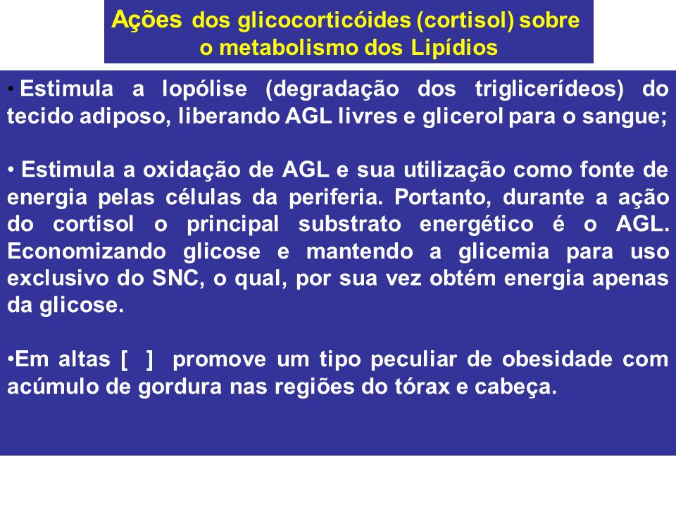 Estimula a lopólise (degradação dos triglicerídeos) do tecido adiposo, liberando AGL livres e glicerol para o sangue; Estimula a oxidação de AGL e sua