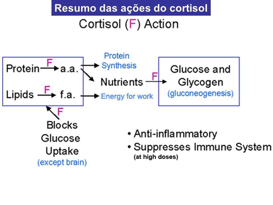 Qualquer tipo de estresse, seja físico ou neurogênico estimula os neurônios hipotalâmicos que passam a secretar o hormônio de liberação da adrenocorticopina) (CRH)