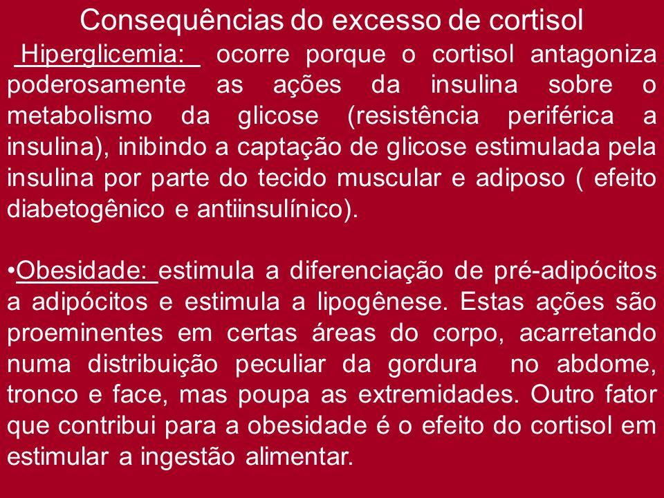Consequências do excesso de cortisol Hiperglicemia: ocorre porque o cortisol antagoniza poderosamente as ações da insulina sobre o metabolismo da glic