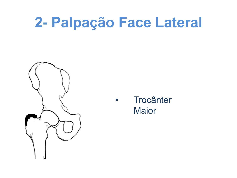 2- Palpação Face Lateral Trocânter Maior