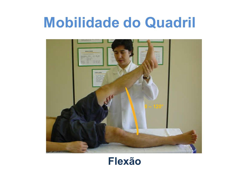 Mobilidade do Quadril Flexão 0 – 120°
