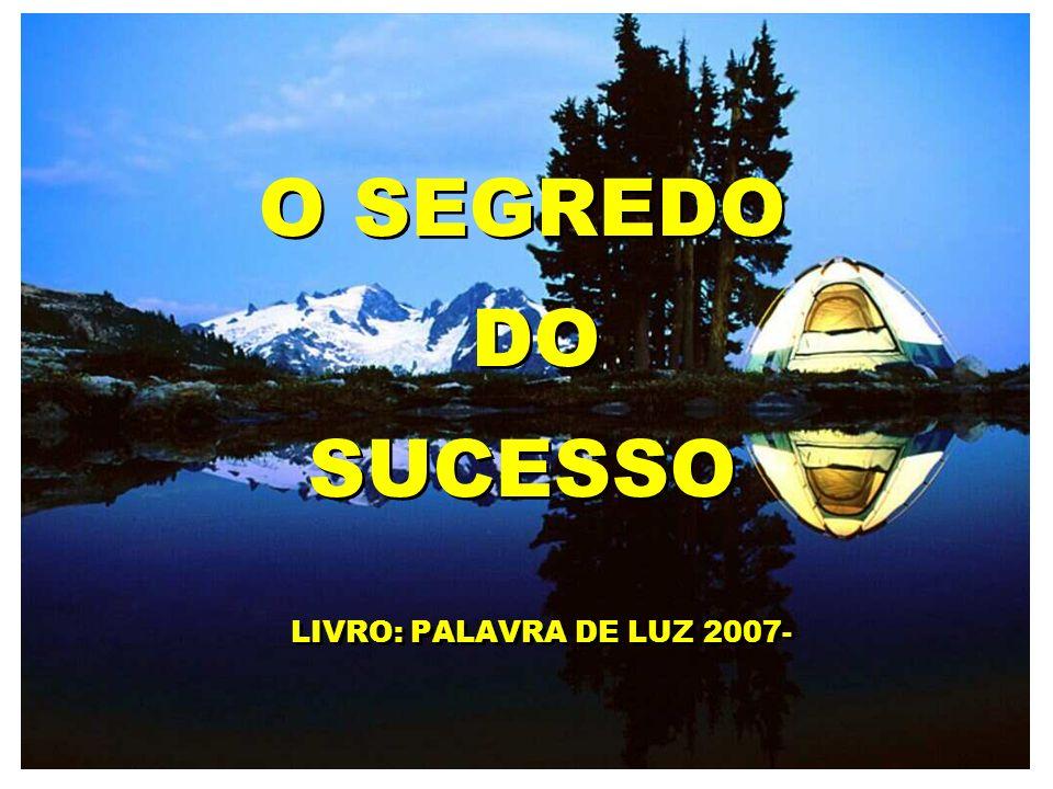 O SEGREDO DO SUCESSO LIVRO: PALAVRA DE LUZ 2007- O SEGREDO DO SUCESSO LIVRO: PALAVRA DE LUZ 2007-