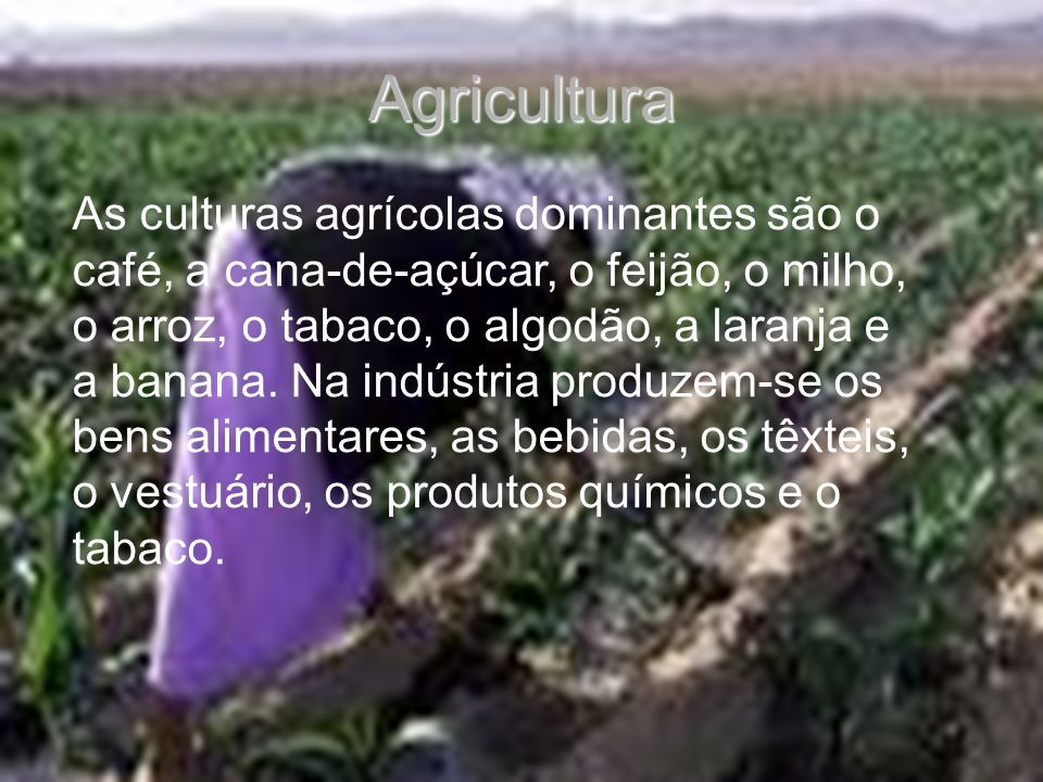 As culturas agrícolas dominantes são o café, a cana-de-açúcar, o feijão, o milho, o arroz, o tabaco, o algodão, a laranja e a banana. Na indústria pro