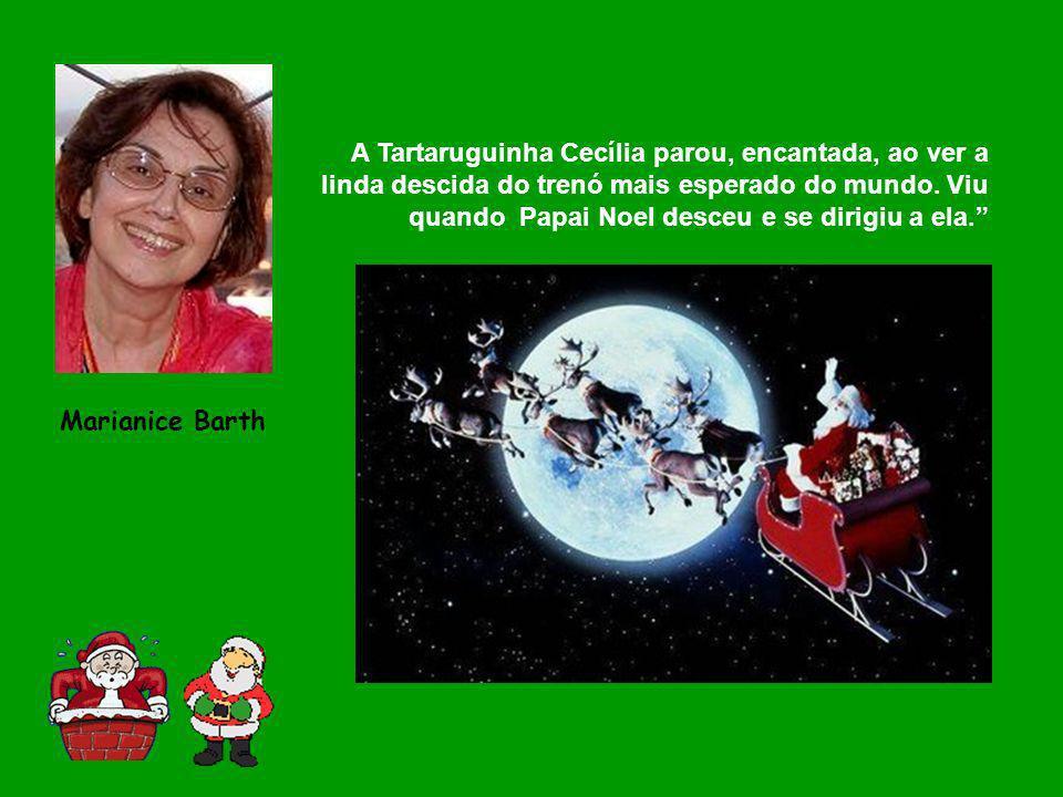 A Tartaruguinha Cecília parou, encantada, ao ver a linda descida do trenó mais esperado do mundo. Viu quando Papai Noel desceu e se dirigiu a ela. Mar