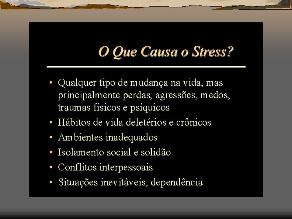 O Que Causa o Stress?