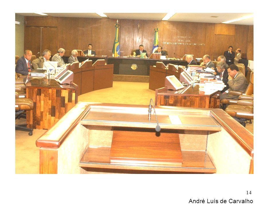 André Luís de Carvalho 14