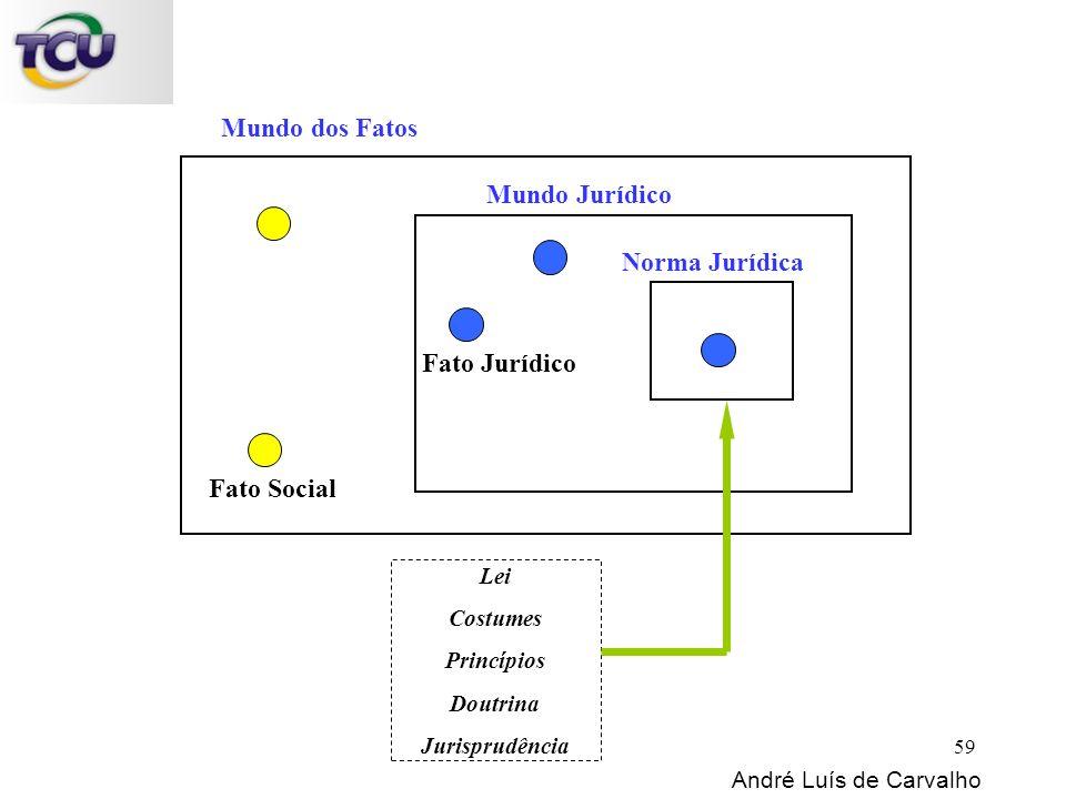Mundo dos Fatos Norma Jurídica Mundo Jurídico Fato Social Fato Jurídico Lei Costumes Princípios Doutrina Jurisprudência André Luís de Carvalho 59