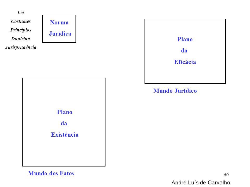 Mundo dos Fatos Norma Jurídica Mundo Jurídico Lei Costumes Princípios Doutrina Jurisprudência Plano da Existência Plano da Eficácia André Luís de Carv