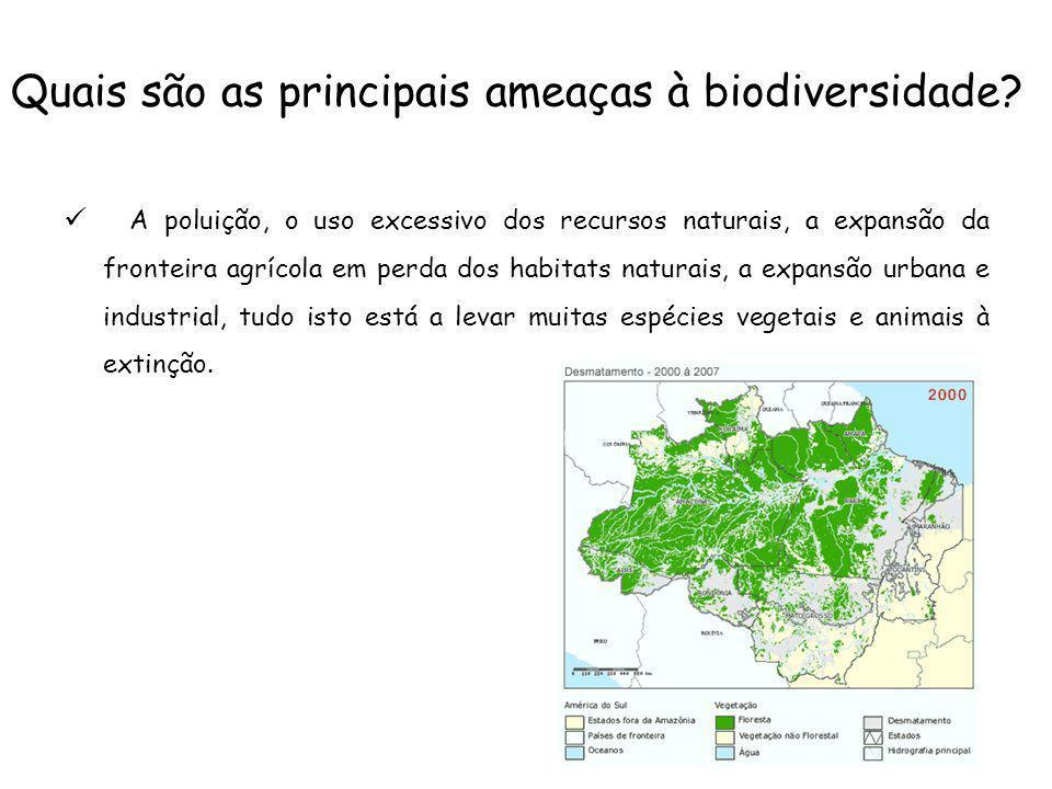 Quais são as principais ameaças à biodiversidade? A poluição, o uso excessivo dos recursos naturais, a expansão da fronteira agrícola em perda dos hab
