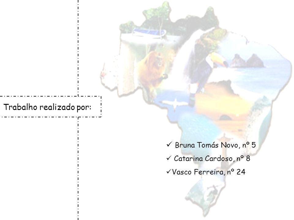 Trabalho realizado por: Bruna Tomás Novo, nº 5 Catarina Cardoso, nº 8 Vasco Ferreira, nº 24