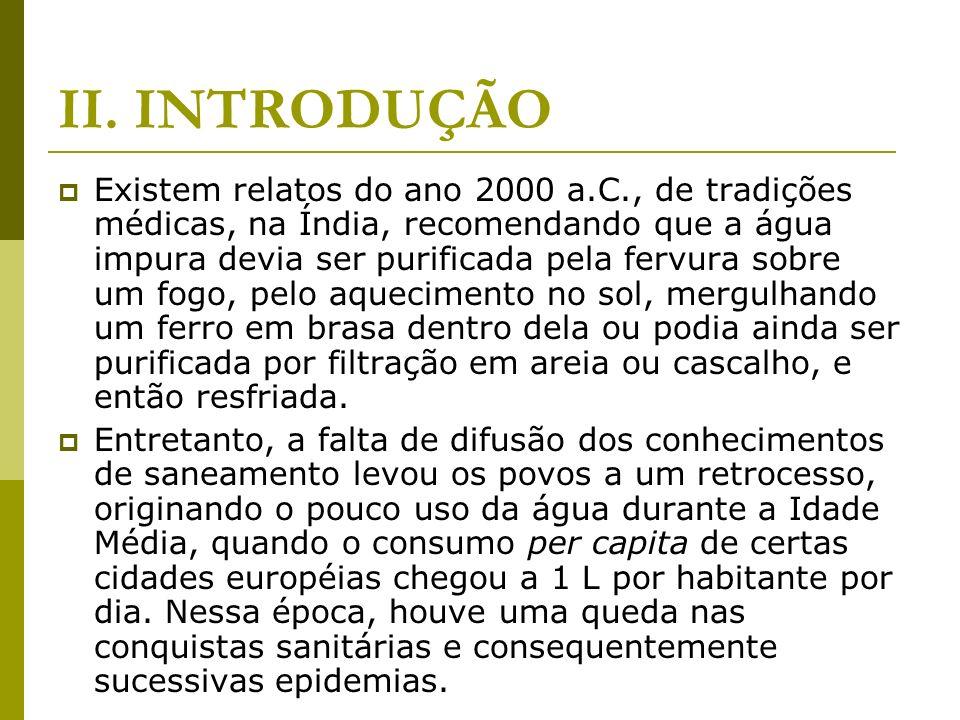 VI.BIBLIOGRAFIA GUIMARÃES, Carvalho e Silva.