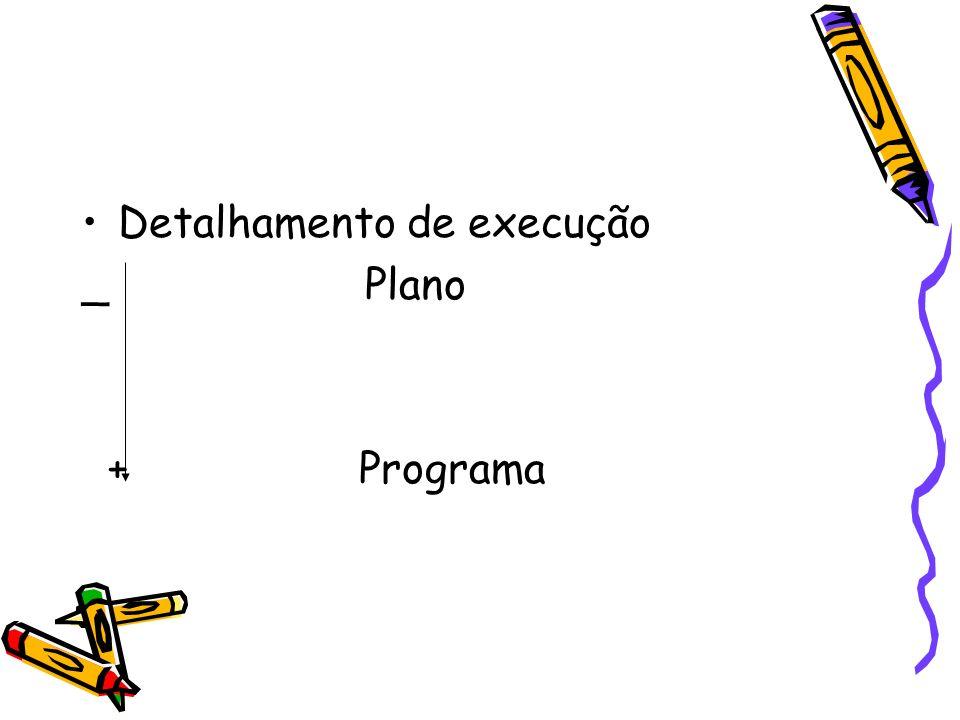 Detalhamento de execução _ Plano + Programa