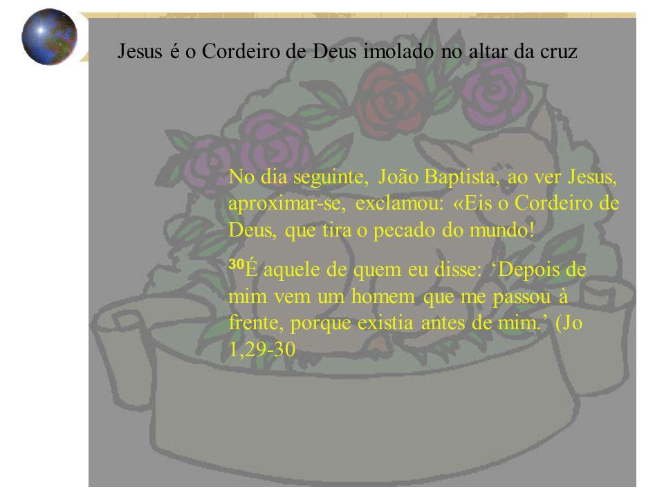 No dia seguinte, João Baptista, ao ver Jesus, aproximar-se, exclamou: «Eis o Cordeiro de Deus, que tira o pecado do mundo! 30 É aquele de quem eu diss