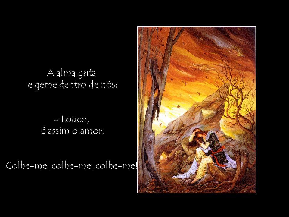 A alma grita e geme dentro de nós: - Louco, é assim o amor. Colhe-me, colhe-me, colhe-me!