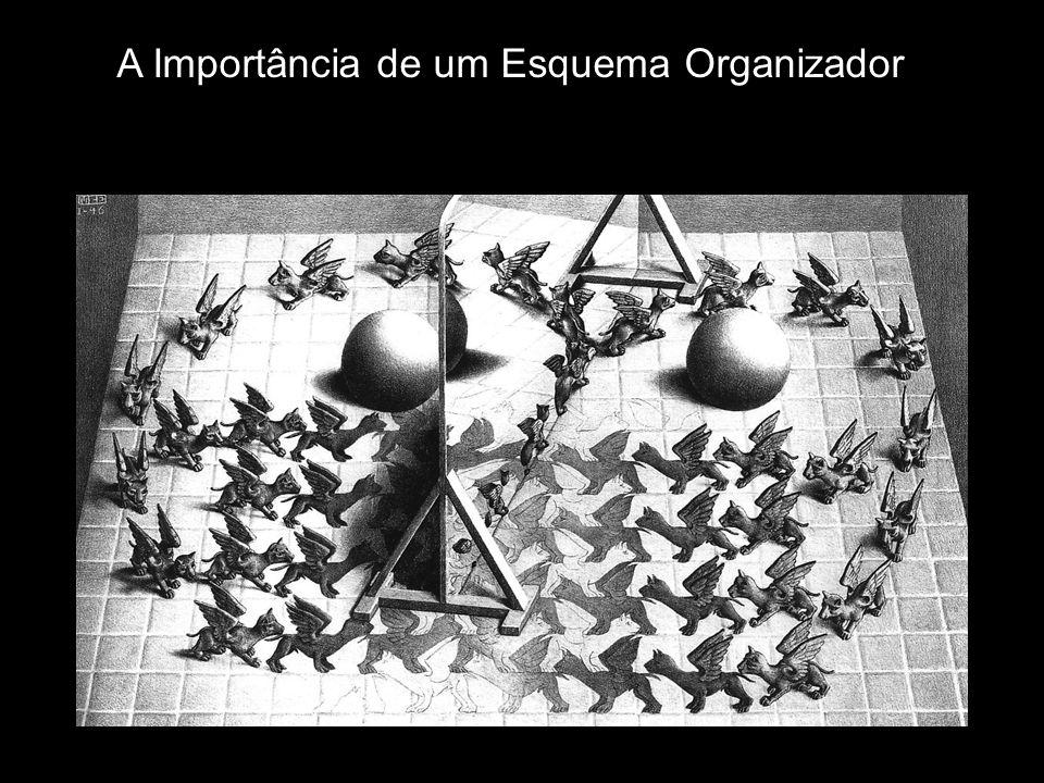 A Importância de um Esquema Organizador