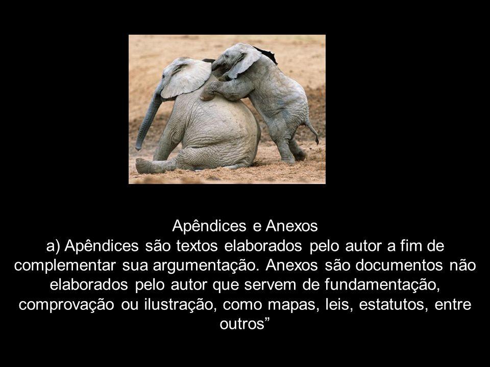 Apêndices e Anexos a) Apêndices são textos elaborados pelo autor a fim de complementar sua argumentação. Anexos são documentos não elaborados pelo aut