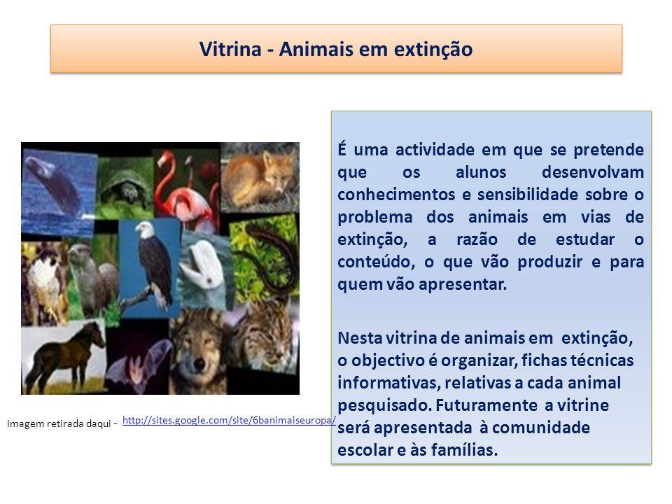 Vitrina - Animais em extinção É uma actividade em que se pretende que os alunos desenvolvam conhecimentos e sensibilidade sobre o problema dos animais