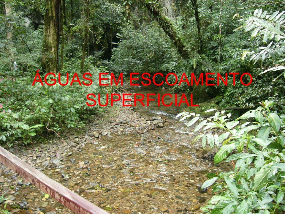 ÁGUAS EM ESCOAMENTO SUPERFICIAL