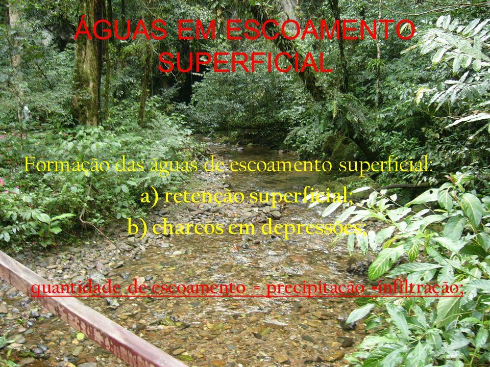 ÁGUAS EM ESCOAMENTO SUPERFICIAL - Erosão: a)fatores: vegetação, precipitação, comprimento da vertente, declividade, capacidade de infiltração; b) formas de erosão: laminar, em sulcos e voçorocas; - medidas de vazão em rios; - relações da vazão com a precipitação: a) hidrograma; b) fluxo basal e superficial; c) medidas de proteção contra as enchentes.