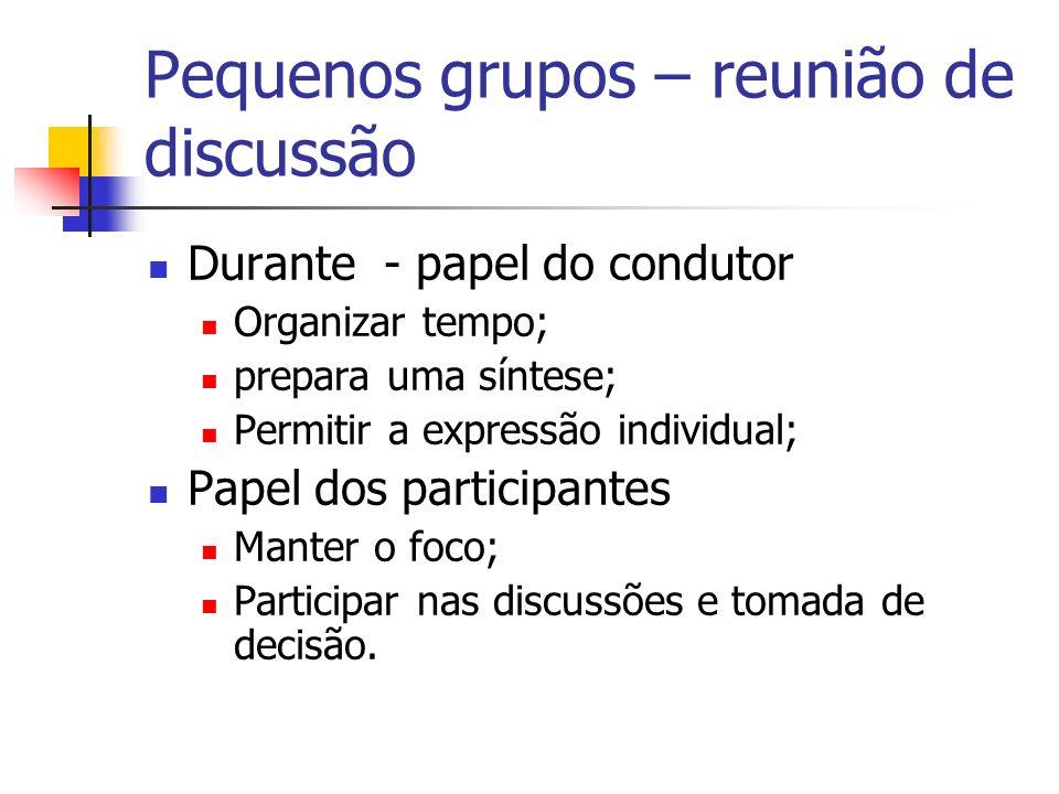 Pequenos grupos – reunião de discussão Durante - papel do condutor Organizar tempo; prepara uma síntese; Permitir a expressão individual; Papel dos pa