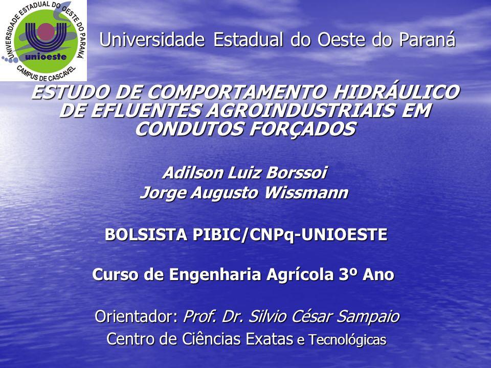 ESTUDO DE COMPORTAMENTO HIDRÁULICO DE EFLUENTES AGROINDUSTRIAIS EM CONDUTOS FORÇADOS Adilson Luiz Borssoi Jorge Augusto Wissmann BOLSISTA PIBIC/CNPq-U