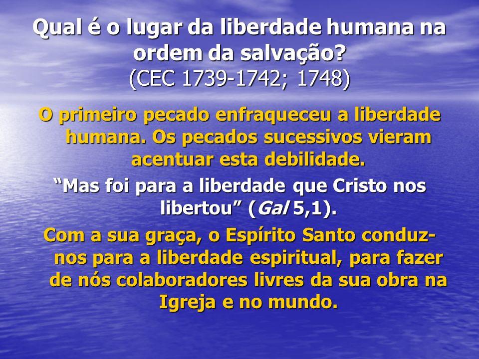Qual é o lugar da liberdade humana na ordem da salvação? (CEC 1739-1742; 1748) O primeiro pecado enfraqueceu a liberdade humana. Os pecados sucessivos