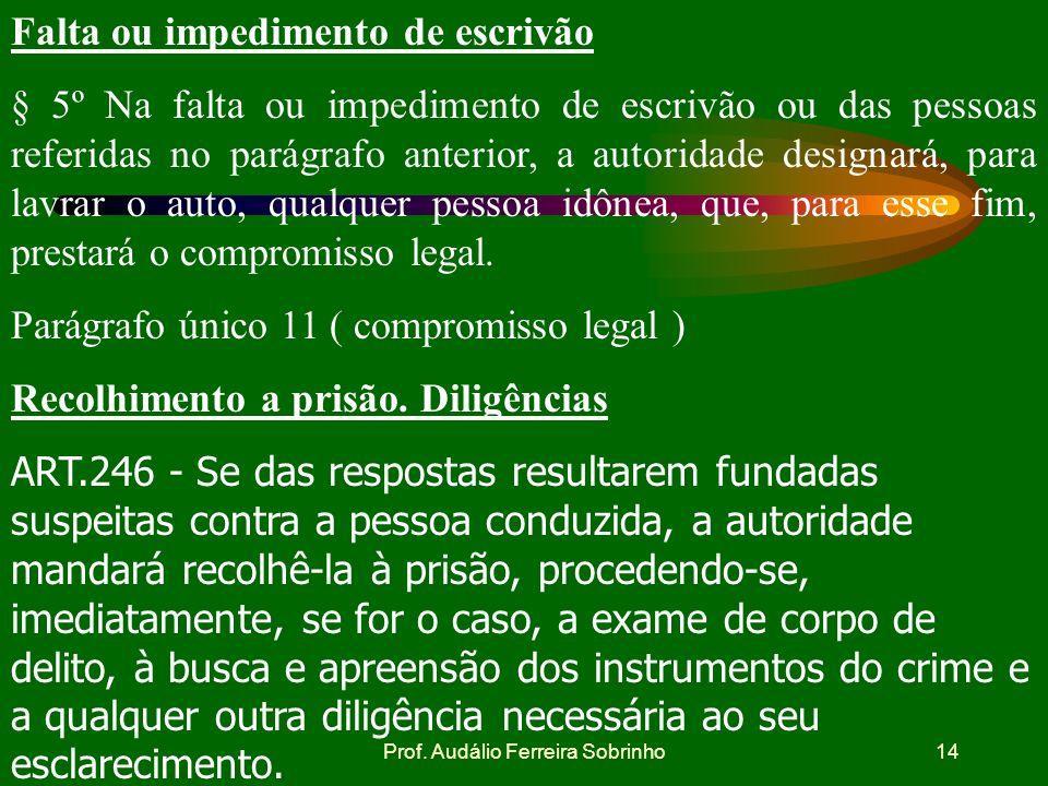 Prof. Audálio Ferreira Sobrinho13 Ausência de testemunhas § 2º A falta de testemunhas não impedirá o auto de prisão em flagrante, que será assinado po