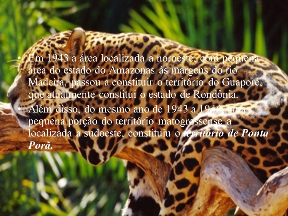 Em 1943 a área localizada a noroeste, com pequena área do estado do Amazonas às margens do rio Madeira, passou a constituir o território do Guaporé, q