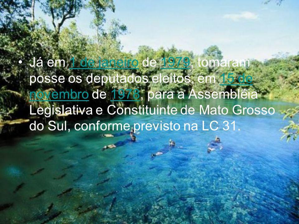 Já em 1 de janeiro de 1979, tomaram posse os deputados eleitos, em 15 de novembro de 1978, para a Assembléia Legislativa e Constituinte de Mato Grosso