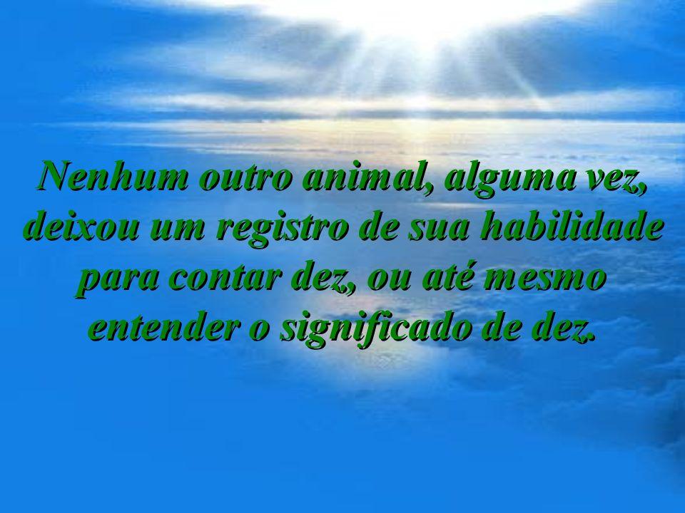 Quarto: Homem tem algo mais que instinto animal: O poder de razão!