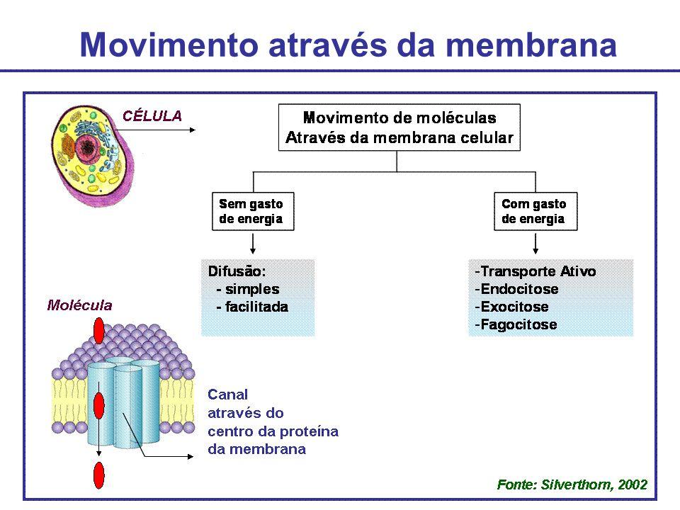 Movimento através da membrana