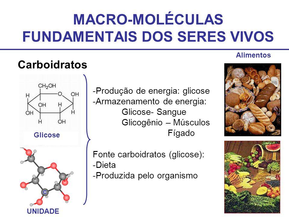 MACRO-MOLÉCULAS FUNDAMENTAIS DOS SERES VIVOS Carboidratos Glicose UNIDADE Alimentos -Produção de energia: glicose -Armazenamento de energia: Glicose-
