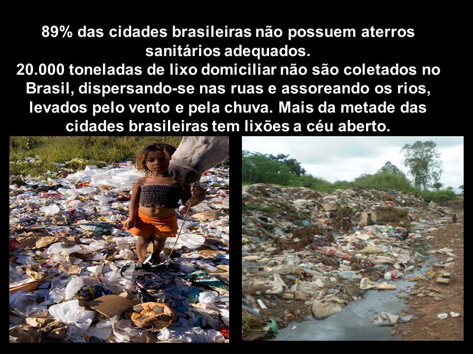 89% das cidades brasileiras não possuem aterros sanitários adequados. 20.000 toneladas de lixo domiciliar não são coletados no Brasil, dispersando-se