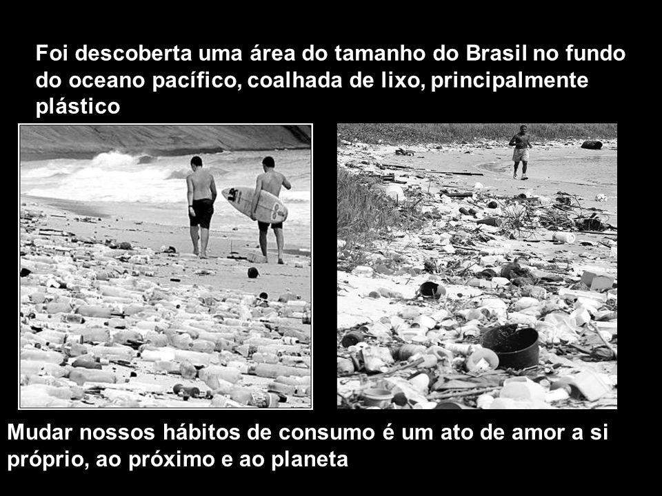 Foi descoberta uma área do tamanho do Brasil no fundo do oceano pacífico, coalhada de lixo, principalmente plástico Mudar nossos hábitos de consumo é