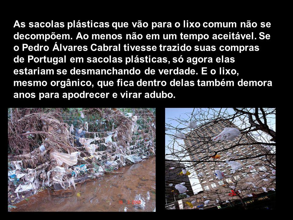 As sacolas plásticas que vão para o lixo comum não se decompõem. Ao menos não em um tempo aceitável. Se o Pedro Álvares Cabral tivesse trazido suas co