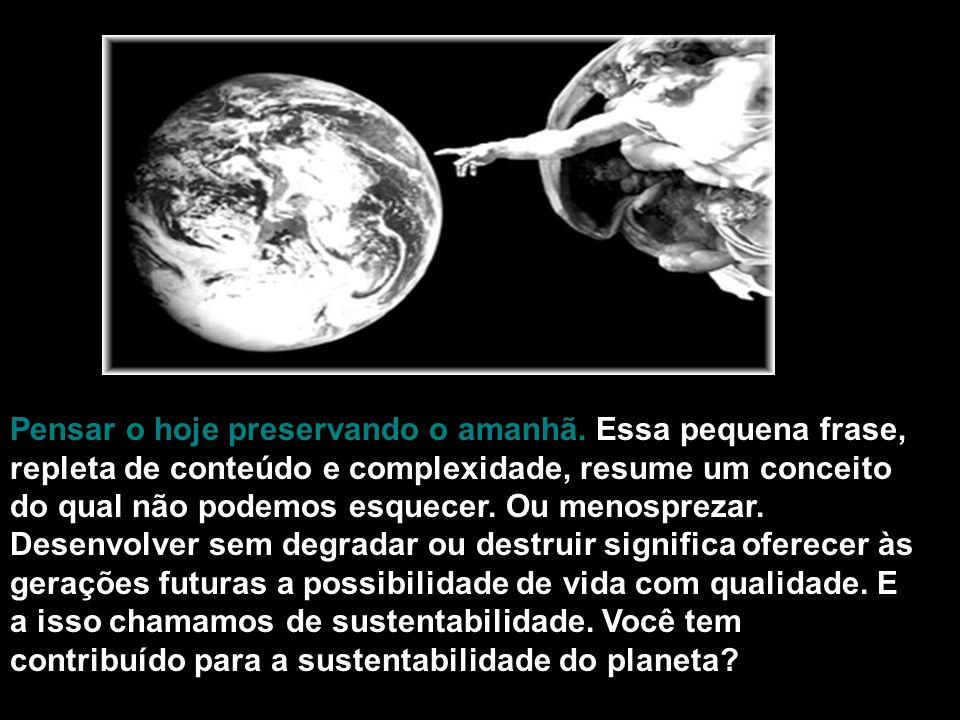 O Brasil é definitivamente o paraíso dos sacos plásticos.