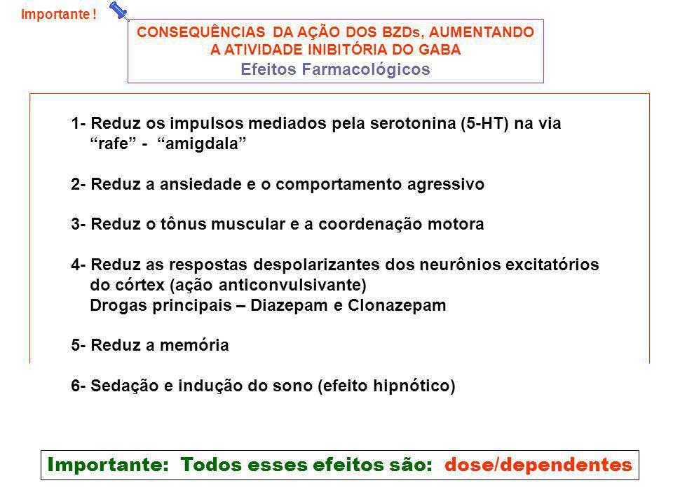 CONSEQUÊNCIAS DA AÇÃO DOS BZDs, AUMENTANDO A ATIVIDADE INIBITÓRIA DO GABA Efeitos Farmacológicos 1- Reduz os impulsos mediados pela serotonina (5-HT)