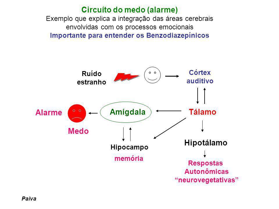 VIAS SEROTONINÉRGICAS E ANSIENDADE Importância no SNC 1- Comportamento (fome) 2- Controle emocional e do humor 3- Interfase sono / vigília 4- Modulação sensitiva da dor e do reflexo do vômito 5- Envolvida com ansiedade Serotonina – ANSIOGÊNICA .
