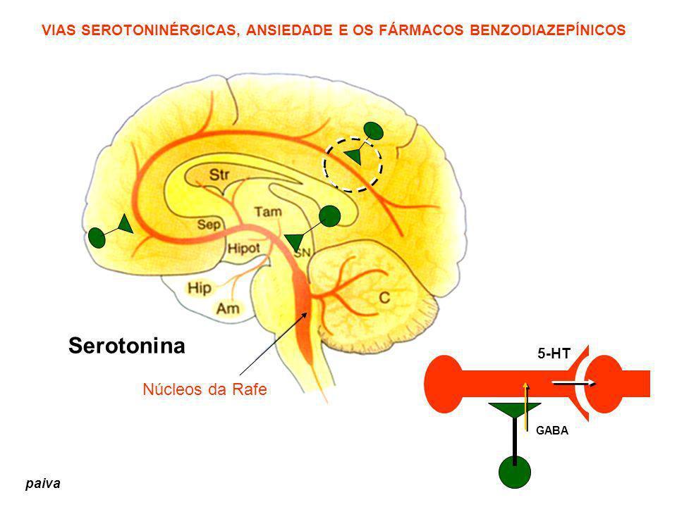 VIAS SEROTONINÉRGICAS, ANSIEDADE E OS FÁRMACOS BENZODIAZEPÍNICOS Serotonina Núcleos da Rafe GABA 5-HT paiva