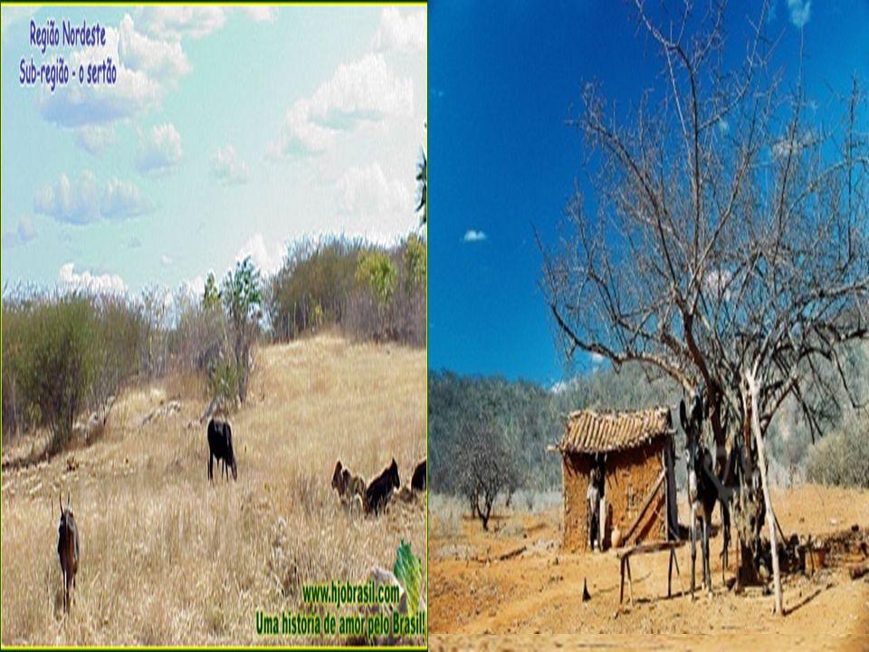 A maior parte da população rural vive da agricultura e da pecuária de subsistência.