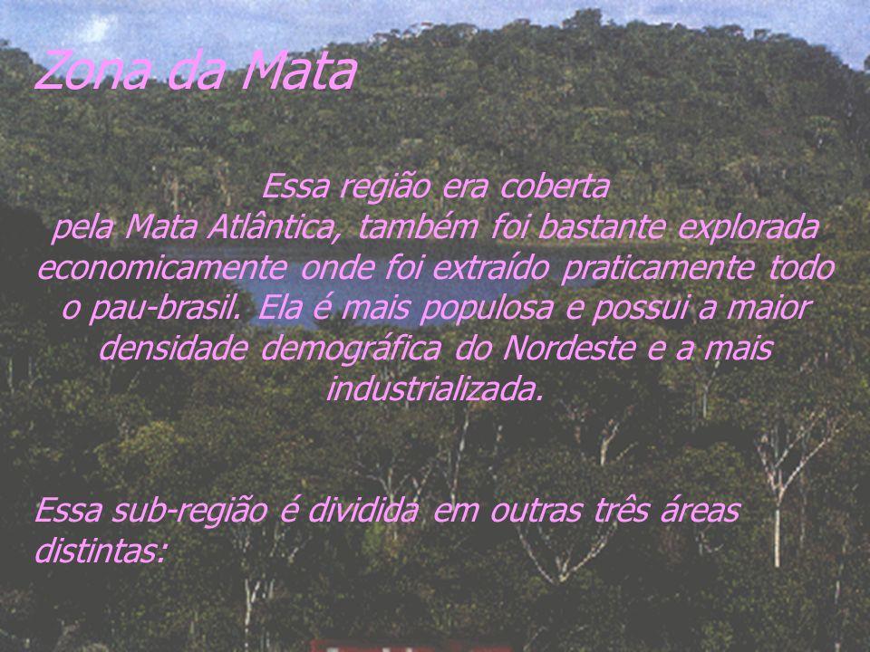 Zona da Mata Essa região era coberta pela Mata Atlântica, também foi bastante explorada economicamente onde foi extraído praticamente todo o pau-brasi