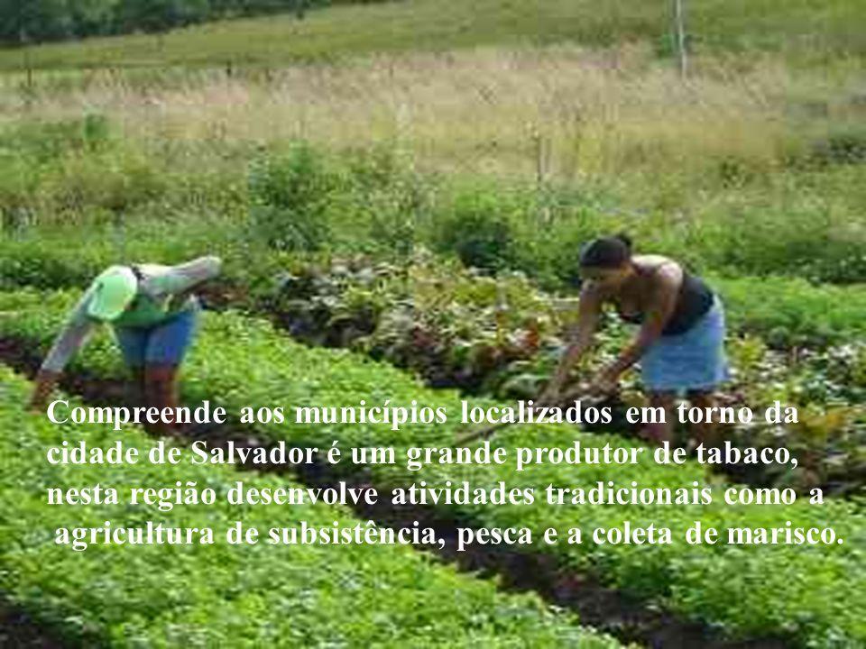 Compreende aos municípios localizados em torno da cidade de Salvador é um grande produtor de tabaco, nesta região desenvolve atividades tradicionais c