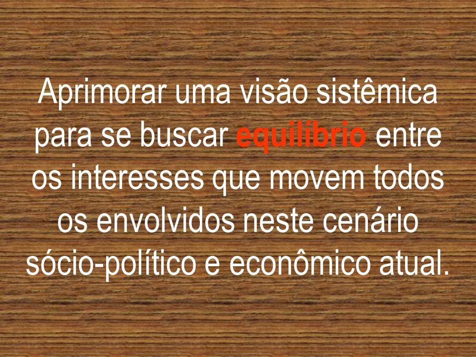 Aprimorar uma visão sistêmica para se buscar equilíbrio entre os interesses que movem todos os envolvidos neste cenário sócio-político e econômico atual.