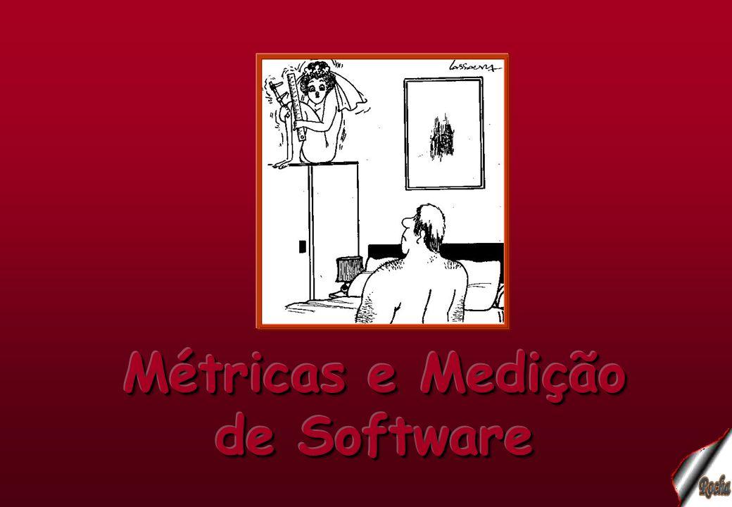 Métricas e Medição de Software Métrica significa o que e como medir.