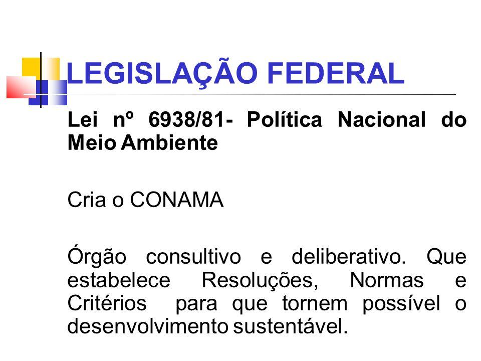 LEGISLAÇÃO FEDERAL Lei nº 6938/81- Política Nacional do Meio Ambiente Cria o CONAMA Órgão consultivo e deliberativo. Que estabelece Resoluções, Normas