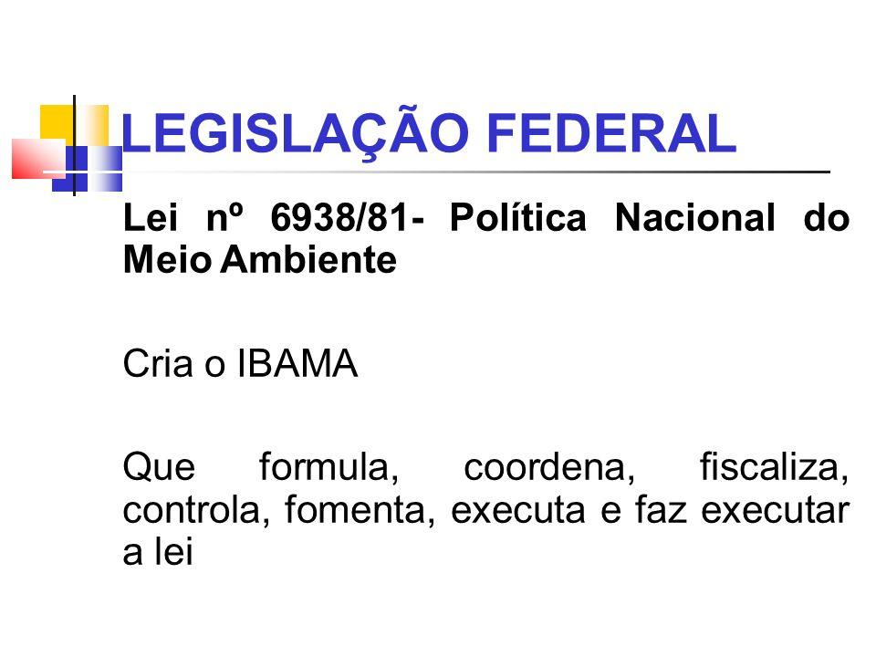 LEGISLAÇÃO FEDERAL Lei nº 6938/81- Política Nacional do Meio Ambiente Cria o IBAMA Que formula, coordena, fiscaliza, controla, fomenta, executa e faz