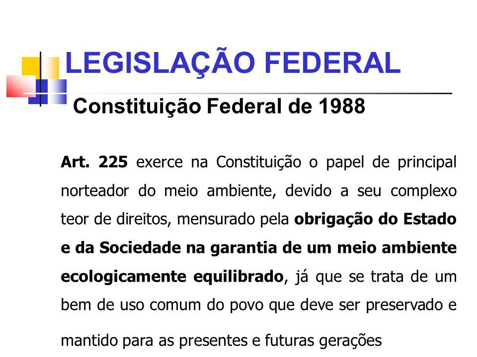 LEGISLAÇÃO FEDERAL Constituição Federal de 1988 Art. 225 exerce na Constituição o papel de principal norteador do meio ambiente, devido a seu complexo