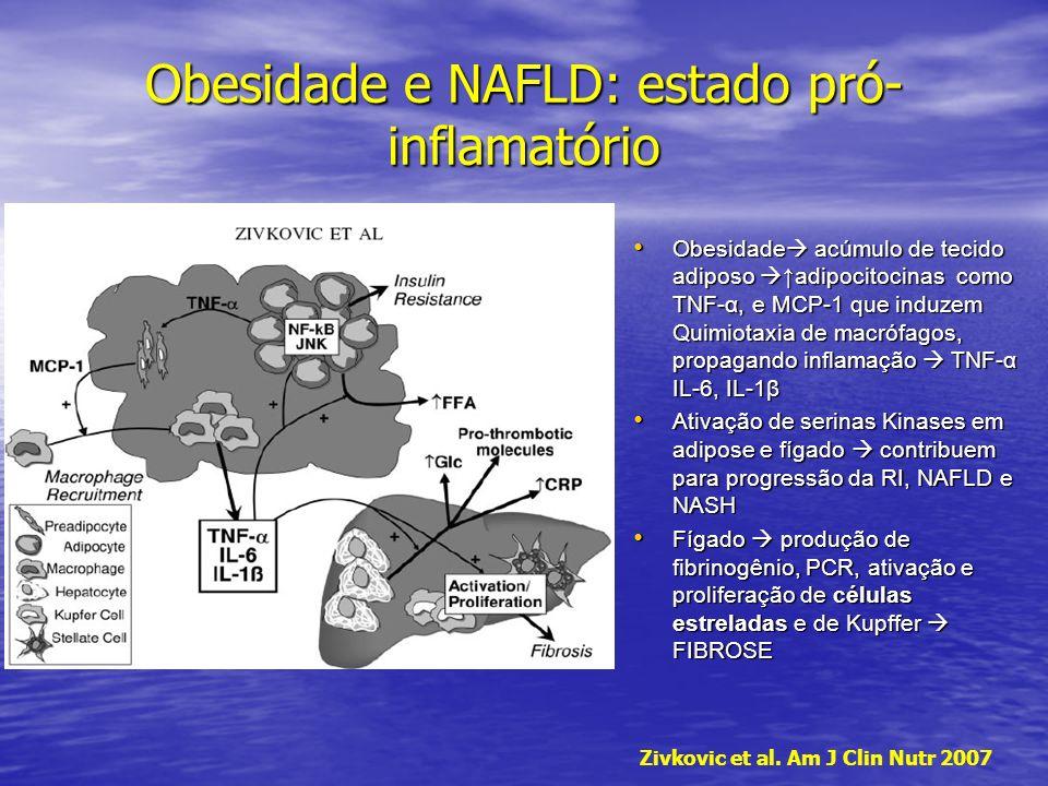 Obesidade e NAFLD: estado pró- inflamatório Obesidade acúmulo de tecido adiposo adipocitocinas como TNF-α, e MCP-1 que induzem Quimiotaxia de macrófag