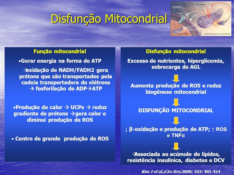 Disfunção Mitocondrial Função mitocondrial Gerar energia na forma de ATP oxidação de NADH/FADH2 gera prótons que são transportados pela cadeia transpo