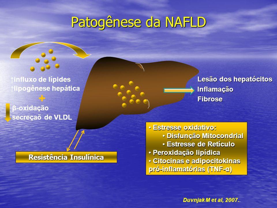Patogênese da NAFLD influxo de lípides lipogênese hepática + β-oxidação secreçaõ de VLDL Duvnjak M et al, 2007.. Resistência Insulínica Lesão dos hepa